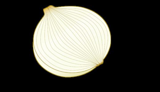 調理用にカットされた玉ねぎのイラスト