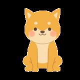 おすわりしている柴犬の無料イラスト