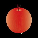 りんごのイラスト