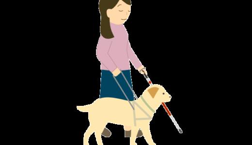盲導犬と歩く女性のイラスト