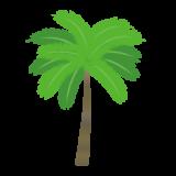 ヤシの木のイラスト