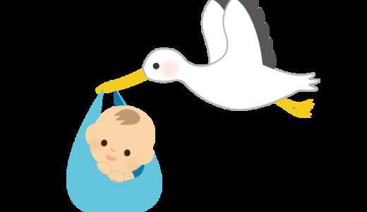 赤ちゃんを運ぶ「コウノトリ」のイラスト