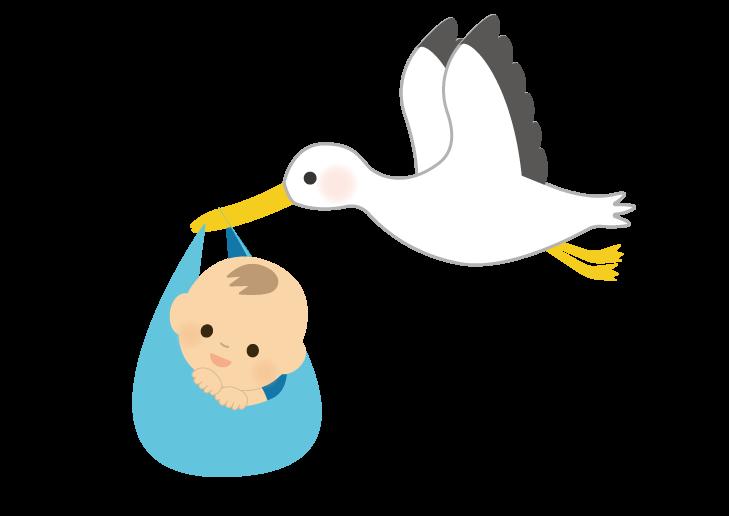 赤ちゃん(男の子)を運ぶコウノトリのイラスト
