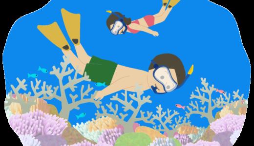 珊瑚の綺麗な海で【シュノーケリング】をしている人のイラスト