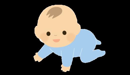 ハイハイしている赤ちゃんのイラスト