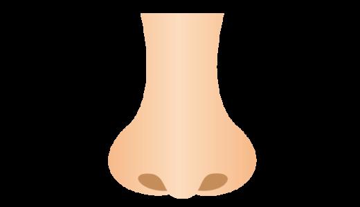 鼻のイラスト