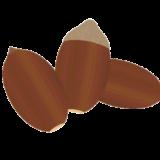 ドングリのイラスト
