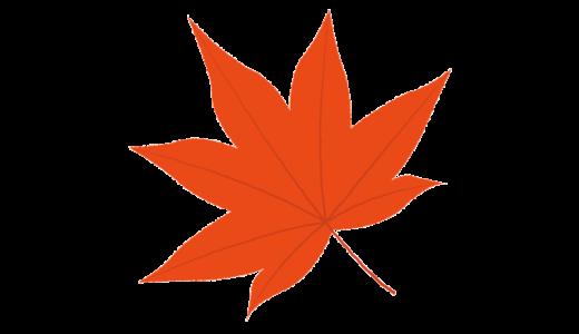 モミジの葉のイラスト