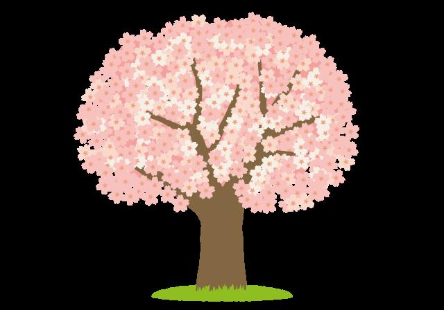 桜の木の無料イラスト イラスト本舗
